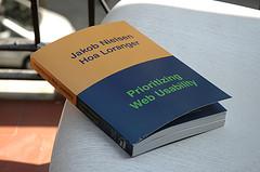 Prioritazing_web_usability